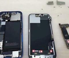 Показаны внутренности iPhone13